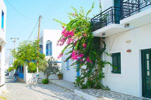 Antiparos Wedding Planner